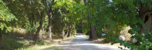 chemin accès étrier d'aubagne
